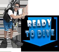 Magasin spécialistes de la plongée, chasse sous-marine, apnée, randonnée subaquatique, natation et Triathlon